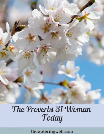 The Proverbs 31 woman in today's world