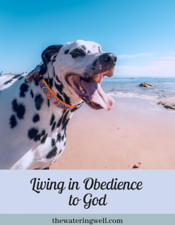 Obedience to God brings freedom
